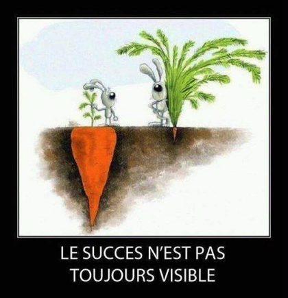 jessetvous, coach de vie, citation